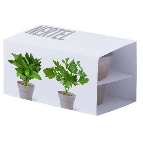 Set maceteros Biodegradables
